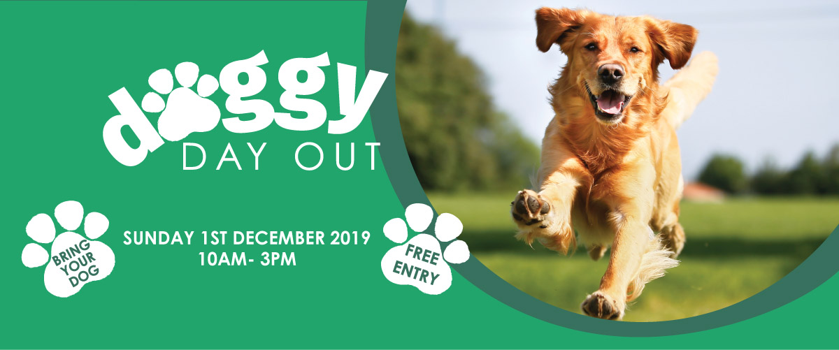 Doggy Day Out Pakenham